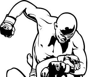 UFC Fight Passion